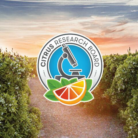 Citrus Research Board Debuts Revamped Brand Identity