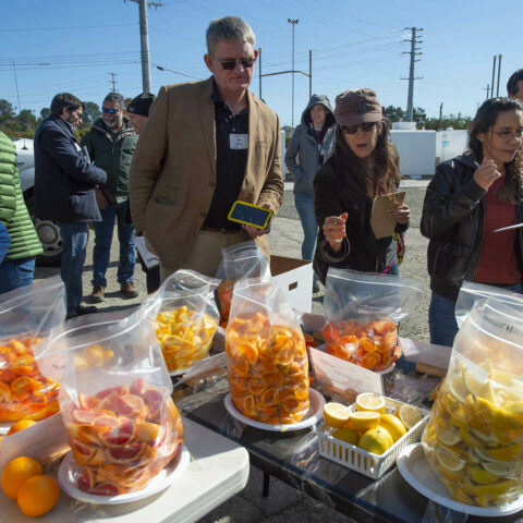 Join us for the UC Riverside Citrus Day for the Industry