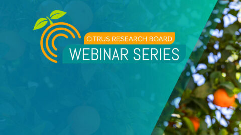 Webinar Series: New Cultivars for California's Diverse Growing Regions